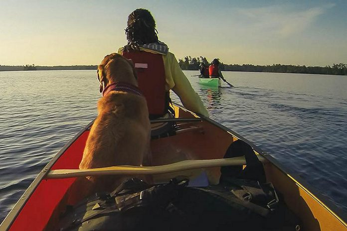 The deadline for the tourism strategy consultation is  February 28, 2019. (Photo: Government of Ontario)