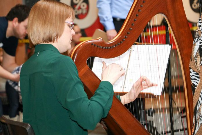 """Harpist Tanah Haney performed music to read by at Peterborough Family Literacy Day 2017 as hundreds of kids converged on Peterborough Square for the annual free event. On Saturday, January 26, 9 a.m. to noon, at the downtown mall, the 2019 event will be held for a 20th year, featuring musical performances by Glen Caradus and Phil Stephenson as well as authors Drew Monkman and Jacob Rodenburg reading from their book """"The Big Book of Nature Activities"""".  (Photo: Peter Rellinger)"""