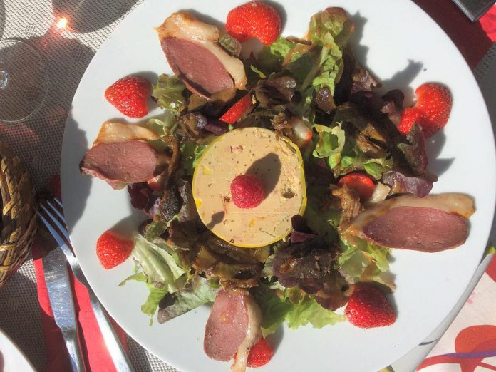 Duck for lunch! Enjoy delicious French cuisine while staying at La Résidence Terrasson. (Supplied photo)