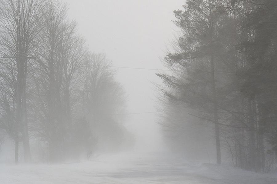 Snow Squall Warning Issued For Kawartha Lakes Kawarthanow
