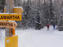 With its many kilometres of groomed trails, Kawartha Nordic Ski Club in the Township of North Kawartha is a popular destination for both Nordic skiing and snowshoeing. The trails are a brief drive from both Burleigh Falls Inn and Viamede Resort (which also offers cross-country skiing and snowshoeing on the adjacent Stony Lake Trails), making it an ideal activity for your next Canadian winter getaway. (Photo: Kawartha Nordic Ski Club)