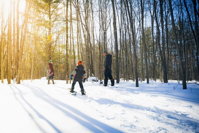 The snowshoe trails at Kawartha Nordic Ski Club are specifically designed to pass by many picturesque features of the landscape.  (Photo: Peterborough & The Kawarthas Tourism)