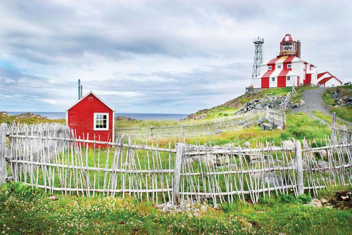 Some of the tour highlights include a visit to Cape Bonavista Lighthouse which is located at the end of Bonavista Peninsula, between Trinity Bay and Bonavista Bay. The end of this peninsula is thought to be the landing location of John Cabot in 1497. (Photo courtesy of Barrett & Mackay Photography)