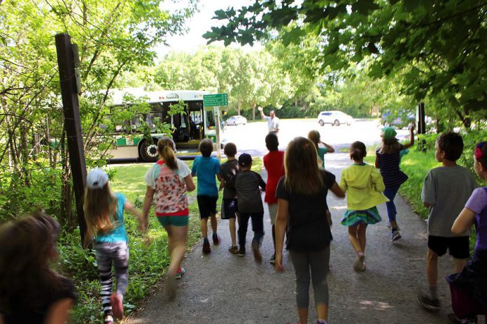 A class of students gets ready to board a Peterborough Transit bus after visiting GreenUP Ecology Park in Peterborough. Active & Safe Routes to School Peterborough  encourages teachers to consider travelling using Peterborough Transit for their class trips through the School Trip by Transit program. (Photo courtesy of GreenUP)