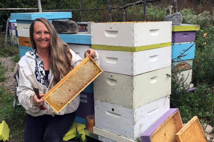Whitney Lake of Lake Reflections Apiary has 10 hives in Cobourg, 20 hives in Fenella south of Peterborough, and also manages the seven beehives located on Trent University's Peterborough campus. (Supplied photo)