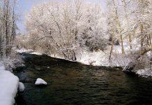 Stream in winter. (Photo: Otonabee Conservation)