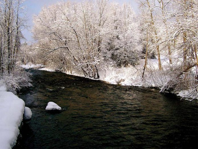 Stream in winter. (Photo: Otonabee Conservation)