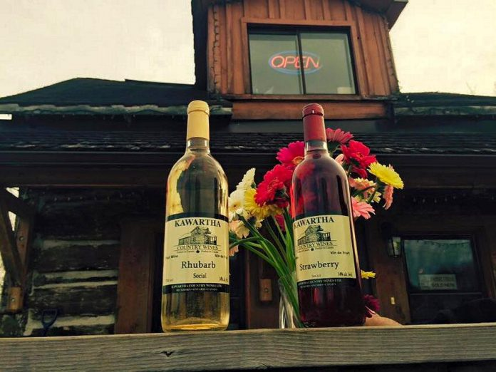 Kawartha Country Wines offers a large selection of fruit wines in different styles, dessert wines, and traditional red and white wines and ciders. (Photo courtesy of Kawartha Country Wines)