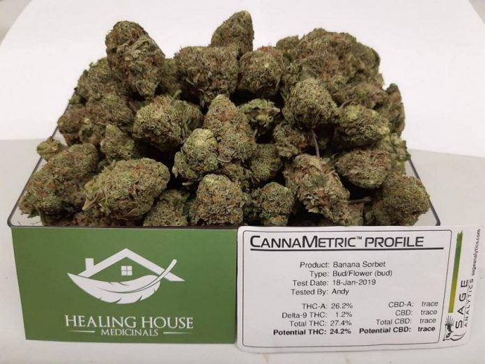 Cannabis at Healing House Medicinals with potency results based on testing done using profling equipment from Sage Analytics. (Photo: Healing House Medicinals)