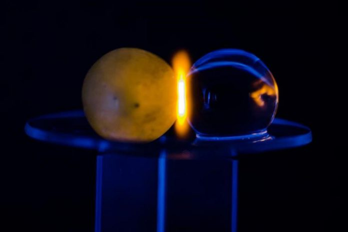The researchers discovered that the phenomenon is not limted to grapes: it happens with any grape-sized spherical object containing water, such as a hydrogel bead. Microwave energy builds in the centre of each sphere and is then attracted to the touching edge, resulting in plasma. (Photo: Hamza K. Khattak, Trent University / PNAS)