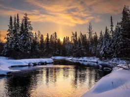 This shot of a sunrise over Eels Creek in North Kawartha taken by Paul Hartley was the top post on our Instagram for February 2019. (Photo: Paul Hartley @paul_hartley_photo / Instagram)