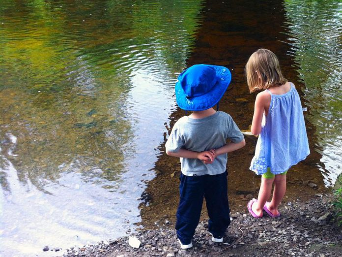 Peterborough has many streams and creeks where you and your family can enjoy the sounds of flowing water or look for water insects or other creatures. (Photo courtesy of GreenUP)