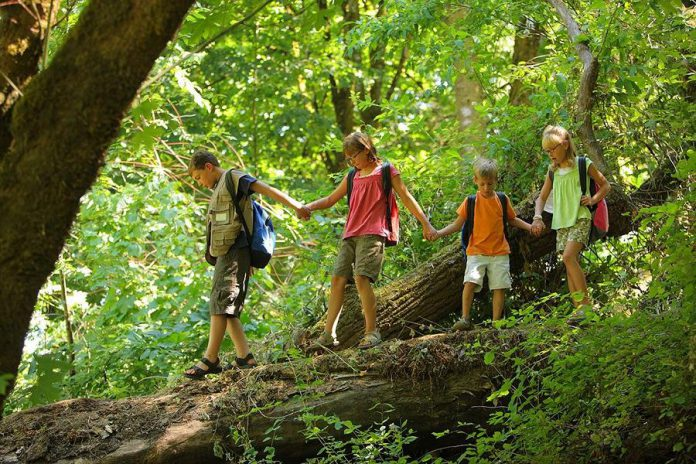 Exposure to nature is important for all of us, but especially for children. Children benefit from a higher dose of nature, as they experience a reduction in stress, an increase in creativity, building of self-esteem, and enhanced concentration skills. Spring is the perfect time to encourage kids to reduce screen time and head outside to explore local urban green space.