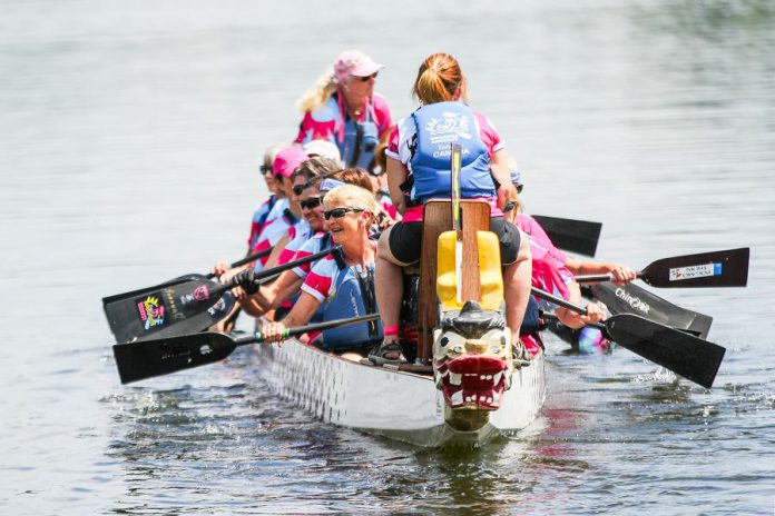 During Peterborough's Dragon Boat Festival on June 8, 2019, community, junior, competitive, and breast cancer survivor teams will race their dragon boats on Little Lake throughout the day. (Photo: Linda McIlwain / kawarthaNOW.com)