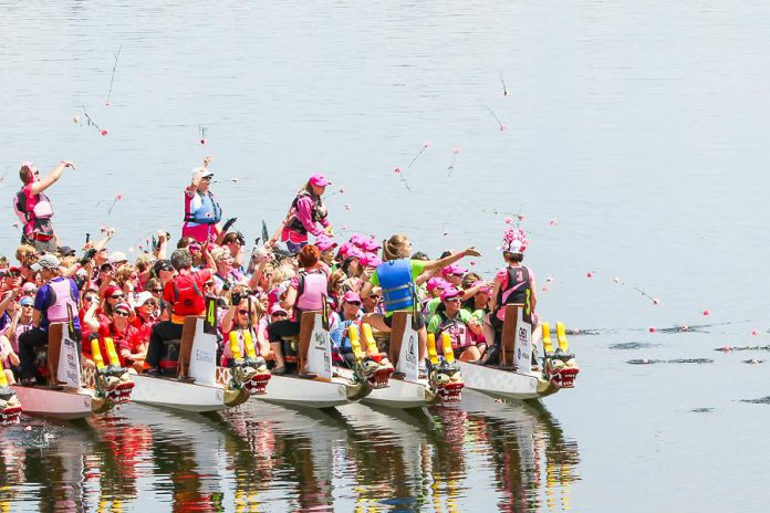 Paddlers at the 2015 Peterborough's Dragon Boat Festival toss their flowers after the Carnation Ceremony, an annual tradition to both remember and honour those who have lost their battle with breast cancer. The Carnation Ceremony originates from a 1996 dragon boat race in Vancouver. (Photo: Linda McIlwain / kawarthaNOW.com)