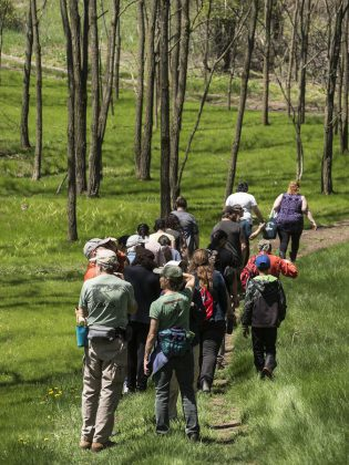 Some of the 80 people who participated in two separate guided indigenous medicine walks at Ballyduff Trails on May 26, 2019 to learn about the cultural, medicinal, and ecological importance of different native plant species found in the area.  (Photo: Anica James)