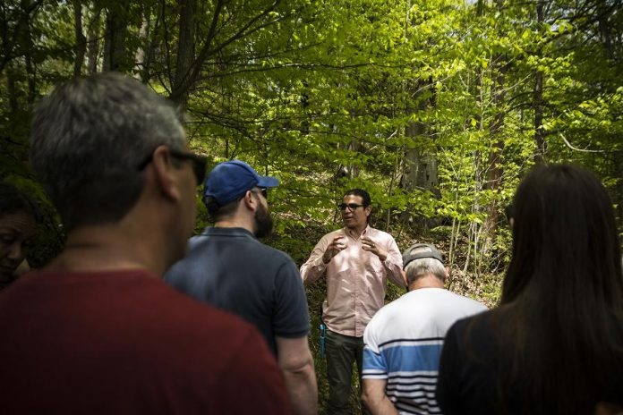 Beedahbin Peltier speaks to participants about different kinds of plants and their medicinal uses during the Indigenous Medicine Walk on May 26, 2019 at Ballyduff Trails.  (Photo: Anica James)