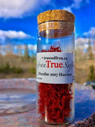 True Saffron is grown and dried in Warkworth, Ontario (Photo: True Saffron)