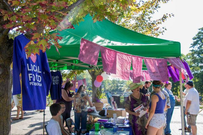 Welcome the fall harvest of local food, celebrate local culture, and wear purple at the annual Purple Onion Festival on September 22, 2019. (Photo courtesy of Peterborough DBIA)