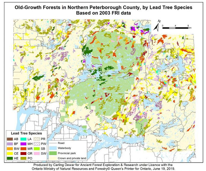 A map of old-growth forests in northern Peterborough County. AB = black ash; LA = larch/tamarack; PR = red pine; BF = balsam fir; MH = sugar maple/hard maple; PW = white pine; BW = white/paper birch; MR = red maple; SB = black spruce; CE = northern white cedar; OR = red oak; SW = white spruce; HE = eastern hemlock; PO = poplar/aspen. (Map courtesy of AFER)