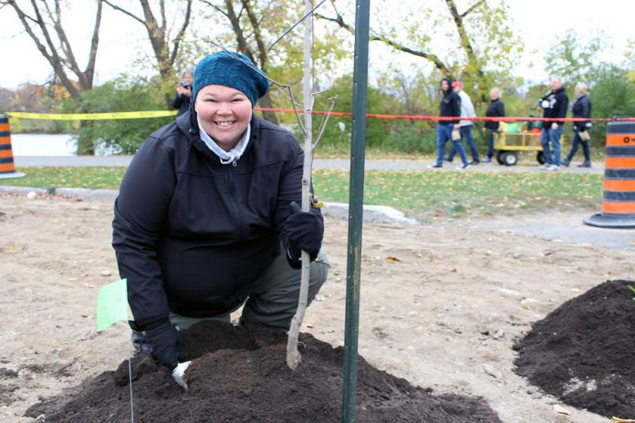GreenUP's manager of water programs Heather Ray, pictured here planting a tree at the Depave Paradise planting day in downtown Peterborough, is the recipient of an outstanding staff person award from Green Communities Canada. (Photo courtesy of GreenUP)