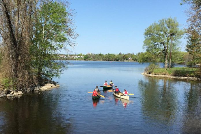 Learn to paddle or hone your paddling skills at one of the on-water courses offered by  The Canadian Canoe Museum. (Photo courtesy of The Canadian Canoe Museum)
