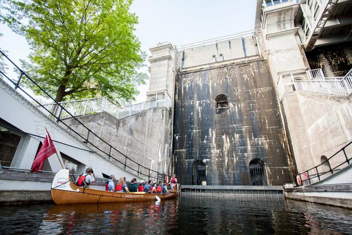 The Voyageur Canoe Tour along the Trent-Severn Waterway and through the Peterborough Lift Lock runs evey Sunday in August (except for August 18). (Photo courtesy of The Canadian Canoe Museum)