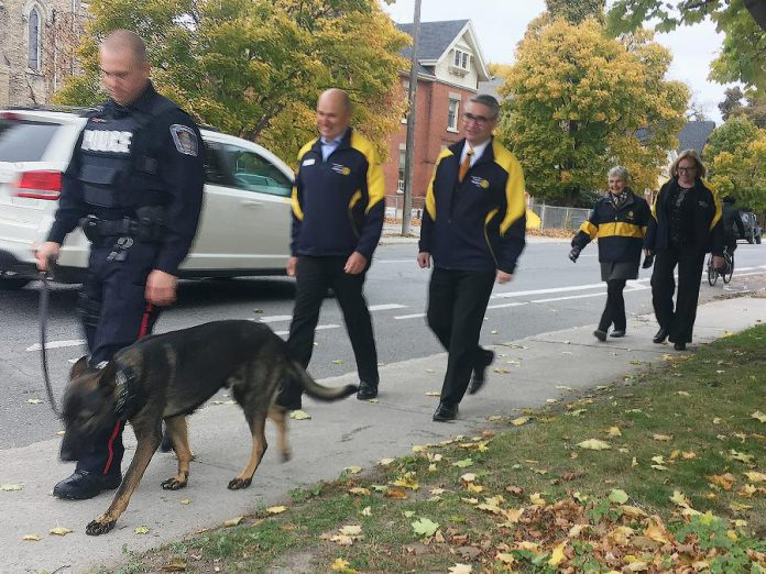 Peterborough Police Constable Bob Cowie and police dog Isaac get some exercise on Water Street, followed by members of the Rotary Club of Peterborough Kawartha including Donna Geary (far right). The Rotary Club's 2018 Christmas Auction  funded the department's acquisition and training of its newest canine member. (Photo: Paul Rellinger / kawarthaNOW.com)