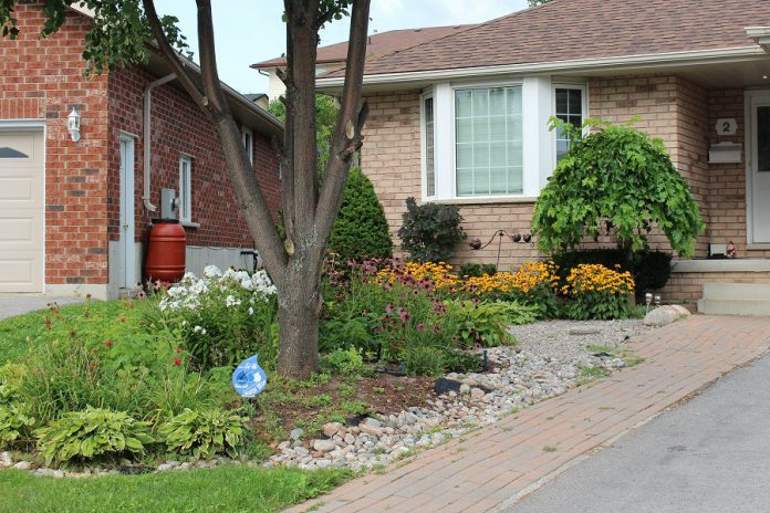 The GreenUP Water Wise program recognizes residents that have adopted Water Wise landscaping practices, such as reducing the amount of lawn in their yard, planting drought-tolerant native species, and using a rain barrel, all of which help to reduce reliance on municipal water. (Photo: GreenUP)