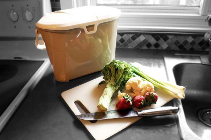 This year, don't let your green food scraps go to waste. Register for the Kitchen to Compost program and City of Peterborough staff will deliver and install a composter in your backyard. New this year, the program includes a countertop food scrap container for holding your veggie scraps until you take them out to your backyard unit. (Photo: Karen Halley)