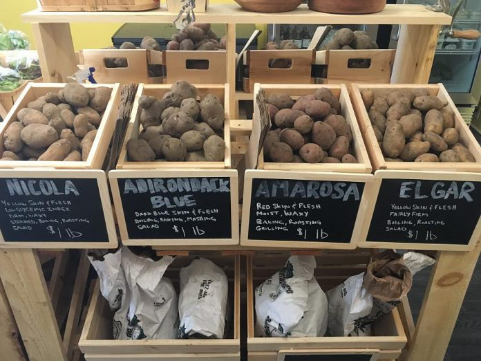 Choose from a selection of local potatoes with varieties that aren't available in regular grocery stores. (Photo: Eva Fisher / kawarthaNOW.com)