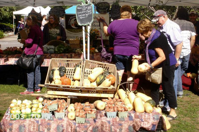 Local Food Month will culminate in the Purple Onion Festival, an annual celebration of local food held at Millenium Park in Peterborough. (Photo: Transition Town Peterborough)