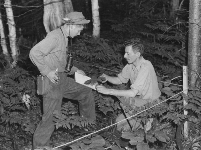 A 17-year-old Robert Bateman with ornithologist and naturalist Bill Gunn at the Algonquin Park Wildlife Research Station in 1946. Gunn, who would become director of the station in the early 1950s, passed away in 1984. (Photo: Algonquin Park Museum Collection)