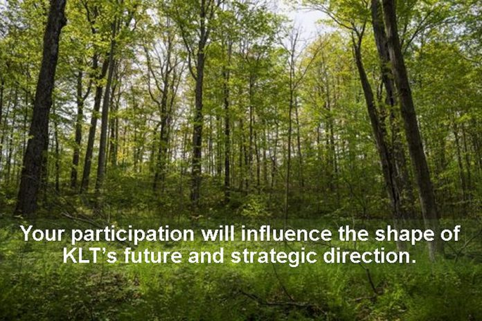 Kawartha Land Trust is hosting a series of pblic engagement sessions across the Kawarthas in September to help guide the future of the organization. (Photo courtesy of Kawartha Land Trust)