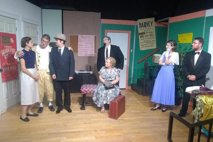 """The cast of Lindsay Little Theatre's production of """"Moon Over Buffalo"""" (left to right): Kaitlyn Thiodeau, Michael Chapman, Colin Dusome, Jeff Condon, Lorna Green, Shannon Peters Bain, and Michael Hart. Not pictured is Bonnie Kelly. (Photo: Sam Tweedle / kawarthaNOW.com)"""