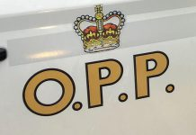 OPP logo on car door