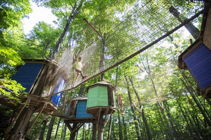 "Treetop Trekking, with five locations in Ontario including the Ganaraska Forest near Port Hope, won the Best New Kids Attraction award from the International Association of Amusement Parks and Attractions (IAAPA) in Orlando, Florida on November 20, 2019 for its  innovative ""Treewalk Village"" kids adventure park concept. First introduced at its Stouffville location in 2015, Treewalk Village parks are a nature-based activity designed specifically for kids, allowing them to explore the forest in a fun and interactive way. (Photo: Mike Pochwat)"