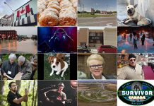 A collage of photos from 16 of our 19 most-read and most-shared stories of 2019.