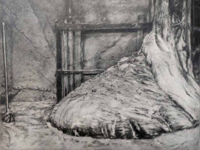 Sasha Opeiko's exhibit '217' features  graphite drawings on gessoed aluminum and a series of 3D printed objects based on the 1986 meltdown of the Chernobyl nuclear power plant. (Photo courtesy of the Art Gallery of Peterborough)
