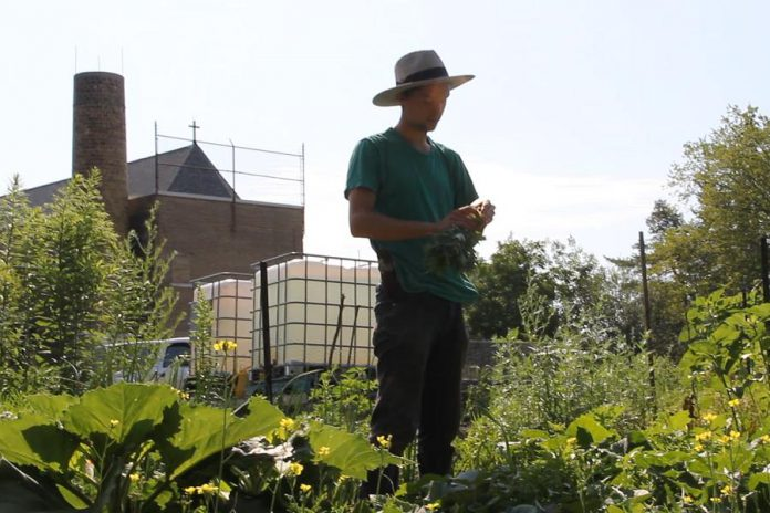 "A still from ""A Garden Video"", a short film by local filmmaker Justin TenEycke. (Photo courtesy of ReFrame)"