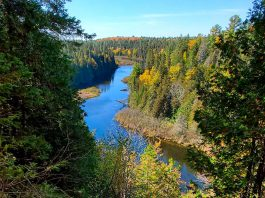 You take small steps in 2020 that will have big impacts on the environment. Making a conscious decision to take local vacations at unique destinations like the Warsaw Caves Conservation Area east of Peterborough can dramatically reduce pollution and CO2 emissions, while leaving you with more money in your bank account and more time to actually enjoy your destination. (Photo courtesy of Otonabee Region Conservation Authority)