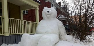 "Jon Kolodziej and Dana Beren Watts created this giant snowbear, which they call ""Snowlar Bear"", in the front yard on a home on George Street in downtown Peterborough. (Photo: Jon Kolodziej)"