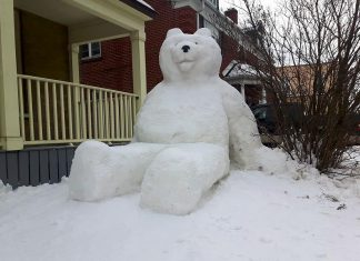 """Jon Kolodziej and Dana Beren Watts created this giant snowbear, which they call """"Snowlar Bear"""", in the front yard on a home on George Street in downtown Peterborough. (Photo: Jon Kolodziej)"""