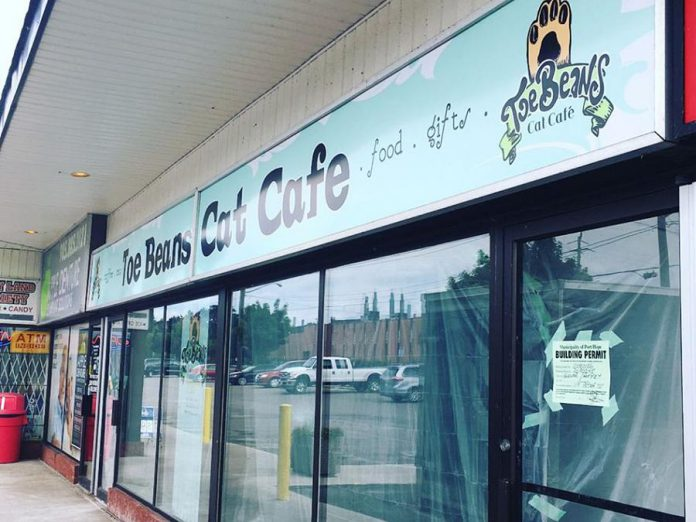 Owners Alise-Ann Glover and Spencer Roffey are selling the Toe Beans Cat Café in Port Hope. (Photo: Toe Beans Cat Café / Facebook)