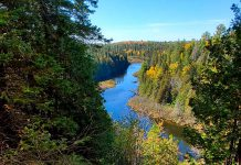 Otonabee Conservation is launching a new online reservation system on its website so campers can more easily book a campsite at Beavermead Campground in Peterborough and Warsaw Caves Conservation Area in Warsaw. Pictured is the view of Indian River from the Lookout Trail at Warsaw Caves Conservation Area. The campground has 52 campsites nestled in a beautiful hardwood forest in the heart of the Kawarthas. (Photo courtesy of Otonabee Conservation)