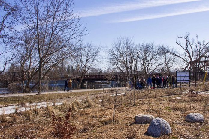Students of St. Anne's Catholic Elementary School gather at he Depave site at 100 Water Street in downtown Peterborough, near the outflow of Jackson Creek into the Otonabee River, to learn about how rain gardens and green spaces can help maintain the local watershed.   (Photo: GreenUP)