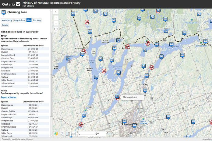 Fish ON-Line is a mobile-friendly website with maps and information on fishing in Ontario. Pictured is information about Chemong Lake. (Screenshot)