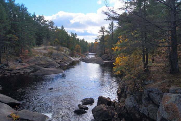 Black River in the northwestern region of Queen Elizabeth II Wildlands provincial park, located southwest of Minden in Kawartha Lakes, Ontario. (Photo: Wikipedia)