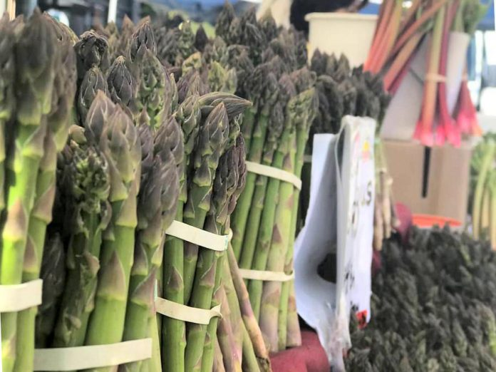 Lakefield Farmers' Market opens for the summer season on Thursday, May 21st. Asparagus is in season in May and June. (Photo: Lakefield Farmers' Market / Facebook)