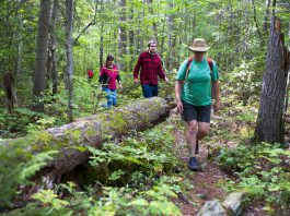 Hiking in a provincial park. (Photo: Ontario Parks)